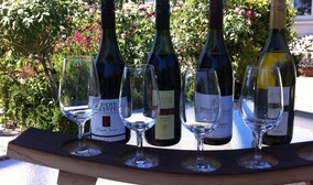 Wine and Food Matching - Book your vineyard tour and matched vertical flight