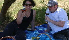 Picnics in the Olive Grove
